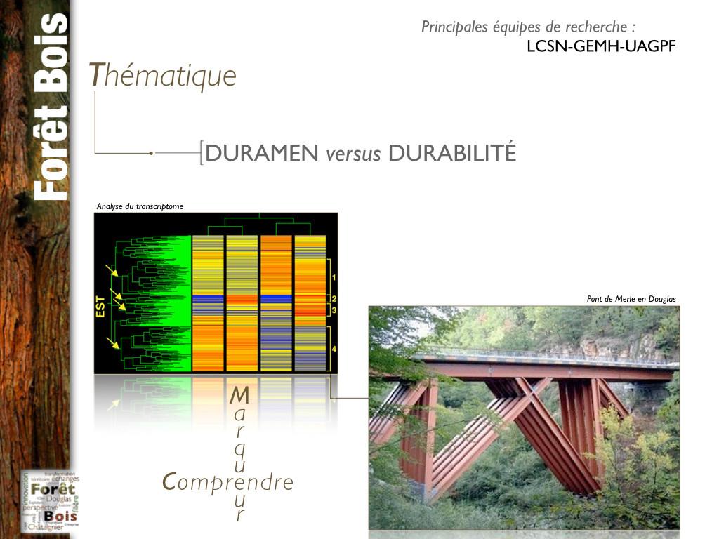 Chaire d'excellence Forêt-Bois.005